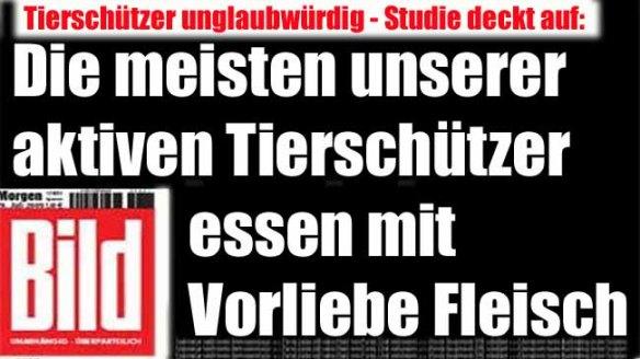 bild-tierschutz