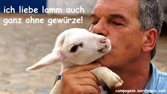 vegan-lamm